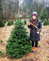Trinity Tree Farm in Issaquah, WA